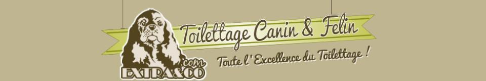 Toilettage La Garde